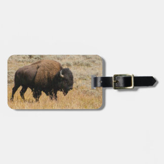 American Bison Grazing In Meadow Grass Photograph Luggage Tag