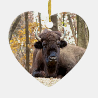 American Bison in Fall Colors Woods Animal Photo Ceramic Ornament