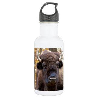 American Bison in Fall Colors Woods Animal Photo Stainless Steel Water Bottle