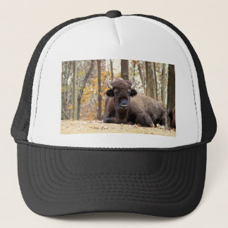 American Bison in Fall Colors Woods Animal Photo Trucker Hat