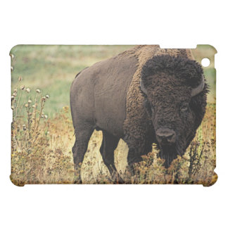 American Bison iPad Mini Case