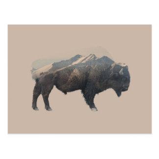 American Bison / Mountain Double Exposure Art Postcard