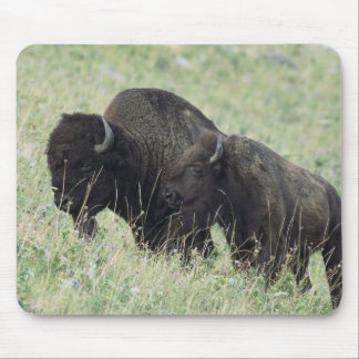 American Bison Mouse Pad