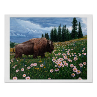 "American Bison - ""No Time For Flowers"" Poster"