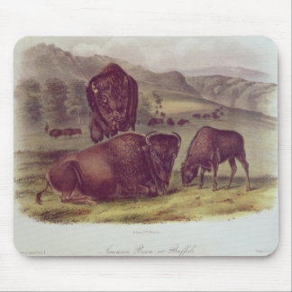 American Bison or Buffalo Mouse Pad