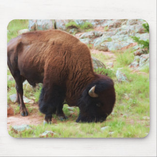 American Bison Painting Mouse Pad