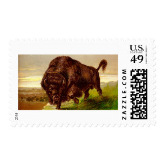 American Bison Postage Stamps