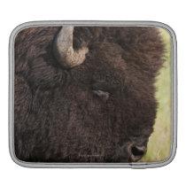 American Bison, South Dakota iPad Sleeve