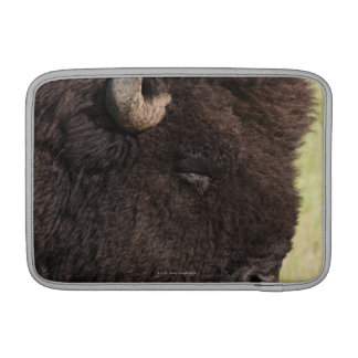 American Bison, South Dakota MacBook Sleeve