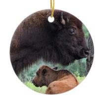 American Bison The Next Generation Ceramic Ornament