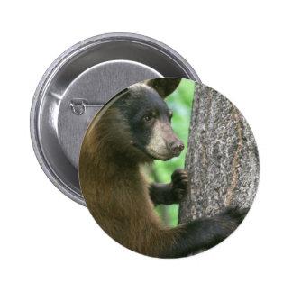 American Black Bear Pinback Button