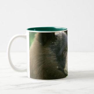 American Black Bear Two-Tone Coffee Mug