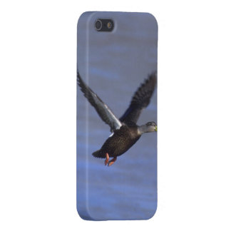 American Black Duck Vertical iPhone 5 Cover- Savvy Cover For iPhone SE/5/5s