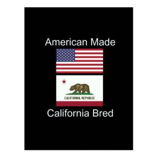 """American Born..California Bred"" Flag Design Postcard"