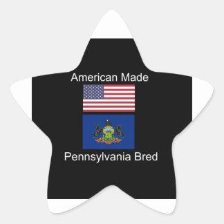 """American Born..Pennsylvania Bred"" Flag Design Star Sticker"