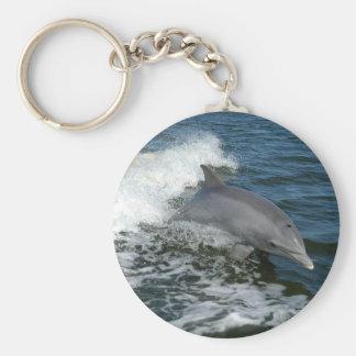 American Bottlenose Dolphin Keychain
