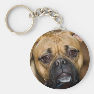American Boxer Keychain