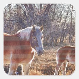 American Breed Square Sticker