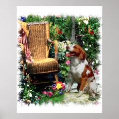 American Brittany Spaniel Art Print print
