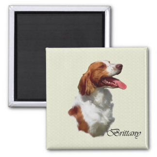American Brittany Spaniel Gifts Refrigerator Magnets