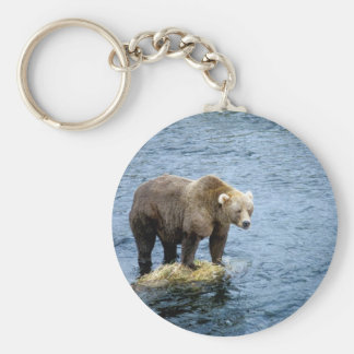 American Brown Bear in Water Keychain
