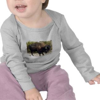 American Buffalo Infant T-Shirt