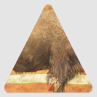 American Buffalo Triangle Sticker