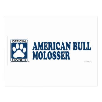 American Bull Molosser Blue Postcard