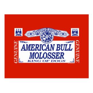 American Bull Molosser Postcard