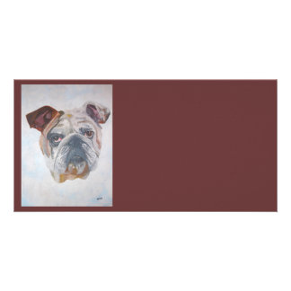American Bulldog Card