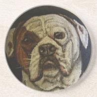 American Bulldog Coasters