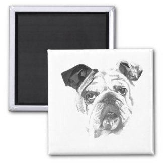 American Bulldog Greyscale 2 Inch Square Magnet
