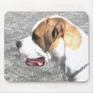 American Bulldog mousepad