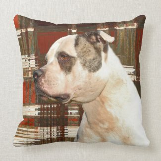 American Bulldog Plaid Pillow