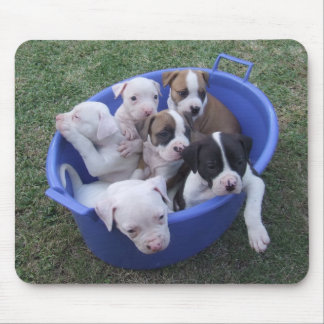 American Bulldog Puppies Mouse Pads