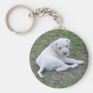 American Bulldog Puppy Keychain