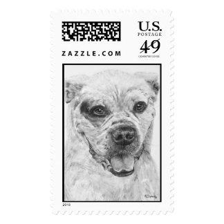 American Bulldog Smiling Postage