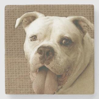 American Bulldog Stone Coaster