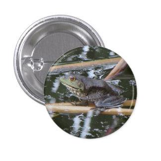 American Bullfrog Button