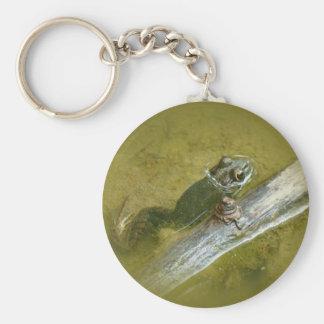 American Bullfrog - Rana catesbeiana Keychain