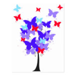American Butterfly Tree Post Card