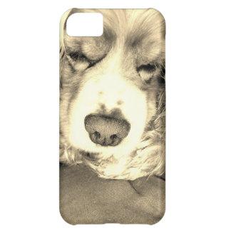 American Cocker Spaniel 1 iPhone 5C Cases