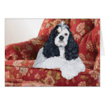 American Cocker Spaniel in Red Chair Greeting Card