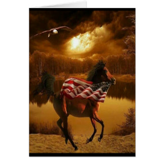 American Colt Card