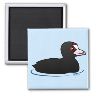 American Coot 2 Inch Square Magnet