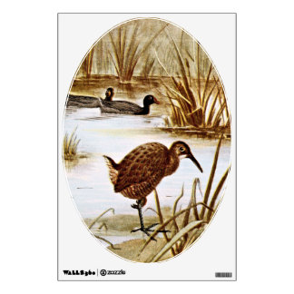 American Coot and Clapper Rail Room Graphic