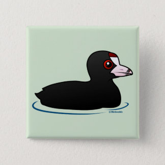 American Coot Button