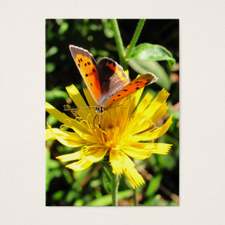 American Copper butterfly ~ ATC Business Card