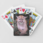American Cougar Big Cat Bicycle® Playing Cards