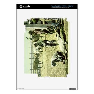 American cowboys branding a calf, c.1900 (photo) iPad 3 decal